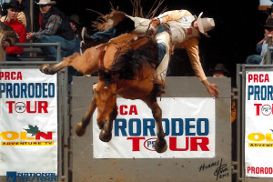 National Western Rodeo Denver Jan 26, 2003 - Z35, Smokeless Sport with Bobby Mote, 88 (1st Place)