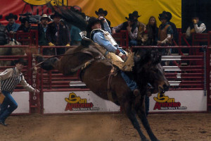 San Antonio Rodeo Feb 16, 2003 - M3, Little Brown Jug with Jason Havens 83 pts