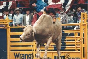 NFR 1989 - 183, Ricky & Joe Wimberly