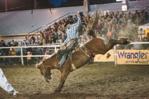 Coalville Aug. 8, 2015 - 722, 18 Karat Kowboy & Landon Mecham Coalville Photo By: J.Beecher