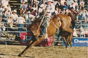 Norco, CA August 1997 - Saddlebronc