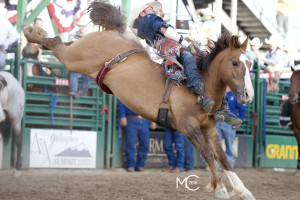 Brian Bain of Powell Butte, OR rides 63 Babe's Foundation of Diamond G, Reno 2015