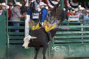 Jacob O'Mara / 230 Northern Moxie of Diamond G, Reno Xtreme Bulls 2016